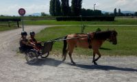 Avenches18Kids-IMG_20180718_153108_0