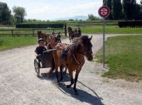 Avenches18Kids-IMG_20180718_153558_6