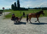 Avenches18Kids-IMG_20180718_154238_6