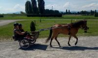Avenches18Kids-IMG_20180718_154706_1