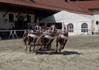 Avenches18Kids-IMG_20180719_153406_1
