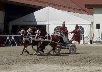 Avenches18Kids-IMG_20180719_153423_2