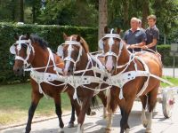 Avenches18Kids-IMG_7113